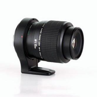 Canon MP-E 65mm F 2.8 Macro