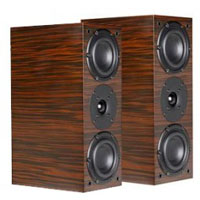 System Audio SA Aura 10 Ebony